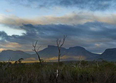 Gondwana Link, Australia