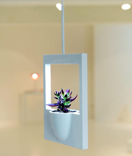 polaroid-flower-vase