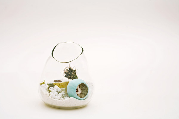 litill-terrariums-2