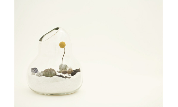 litill-terrariums-4