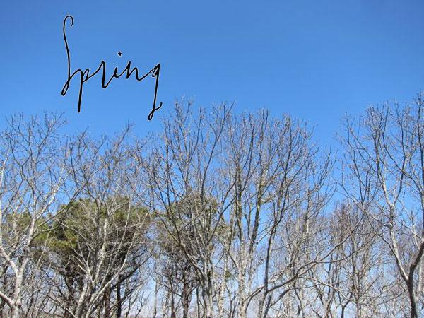 paperfinger-work-spring-lettering