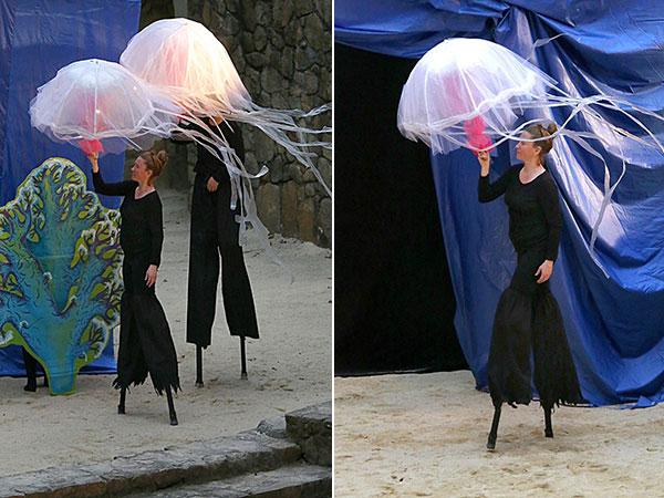 ppi-jellyfish