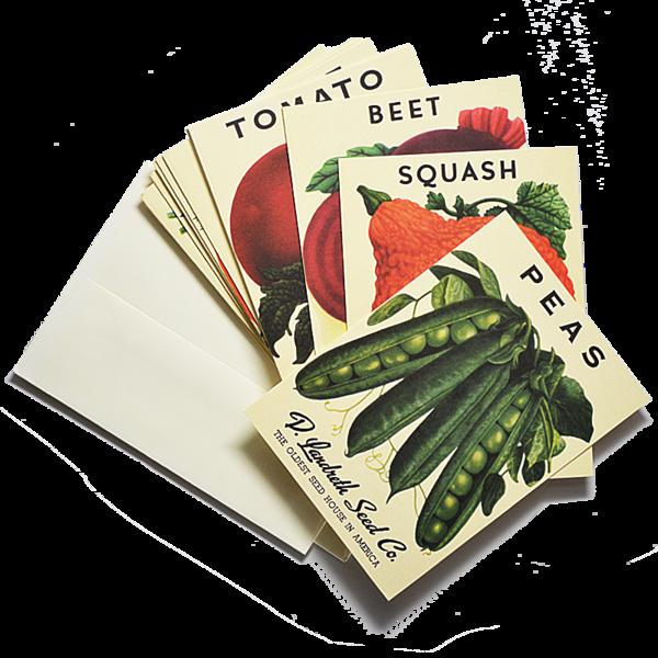 Vegetable-Note-Cards_grande