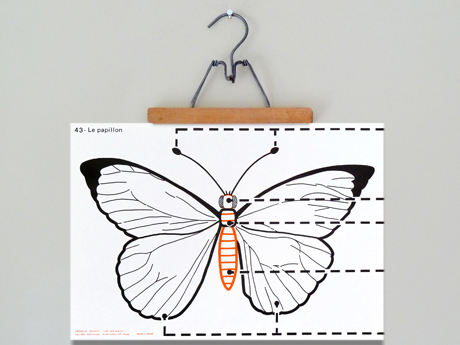 insectcards1c