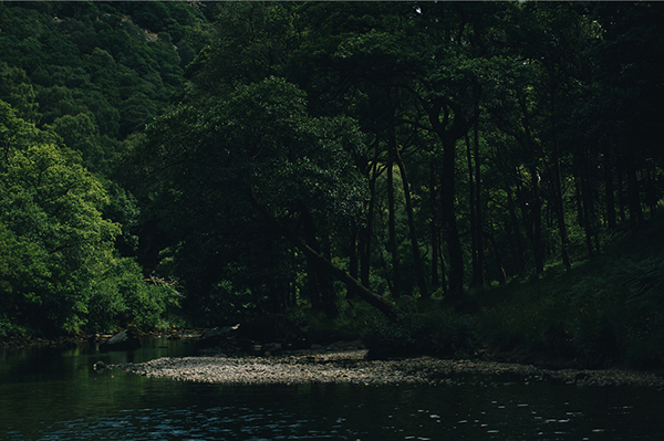 Wildswimming_1