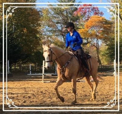 Lindsey Partridge schooling Dreamer at Lancaster Equestrian Stables