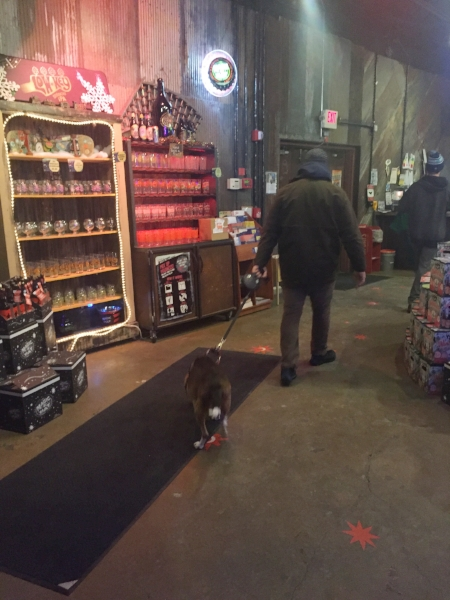 Jaxson enjoys shopping at the Magic Hat Brewing Co. retail store.