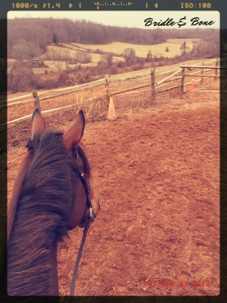 No matter what, life between the ears of a horse always makes things better.