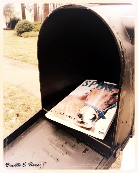 Spike_Mailbox.jpg