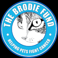 The Brodie Fund.png