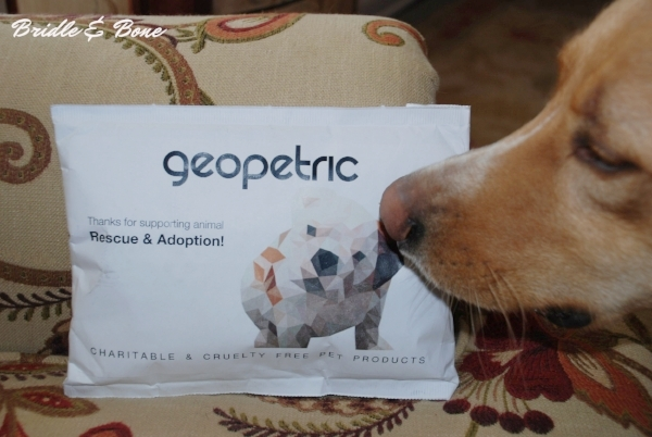Disclosure: I am an affiliate of Geopetric. All thoughts and writing are my own. For more information,view my Media page.
