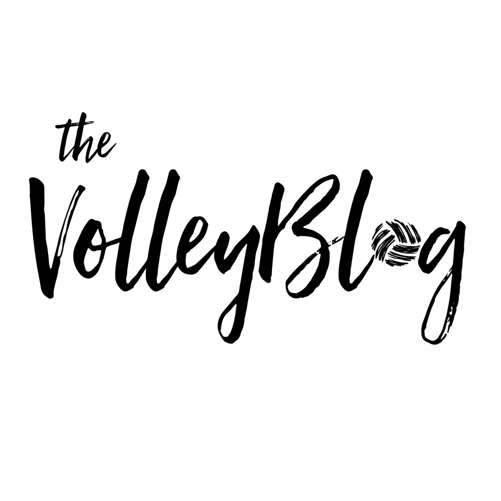 thevolleybloglogo.JPG