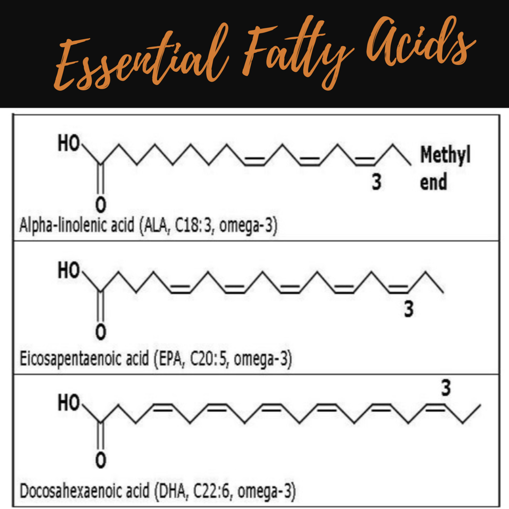 Essential Fatty Acids.png