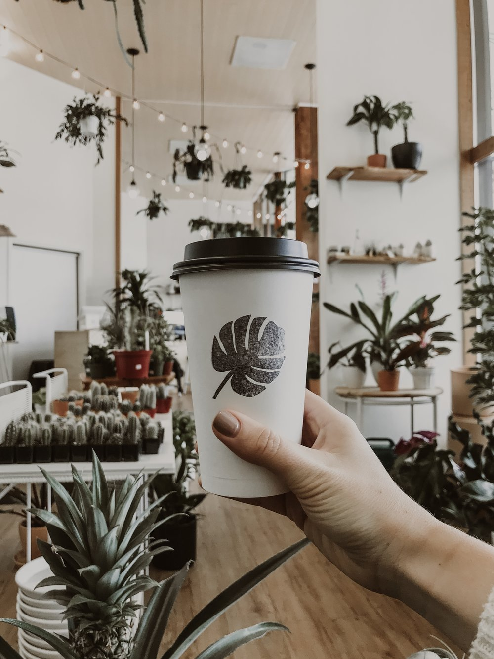 Look at that pineapple plant! DRINK CHOICE: OAT MILK MOCHA