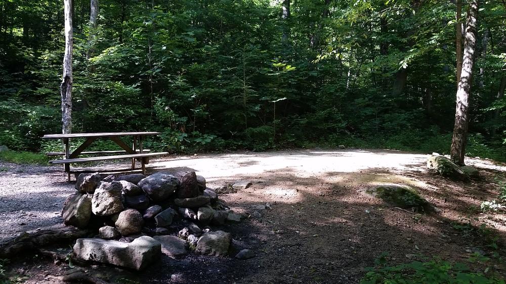 Site T1