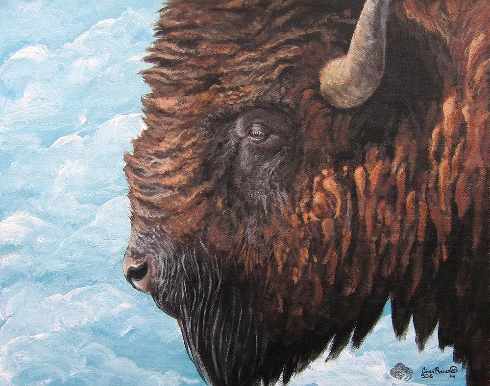 Buffalo Sky