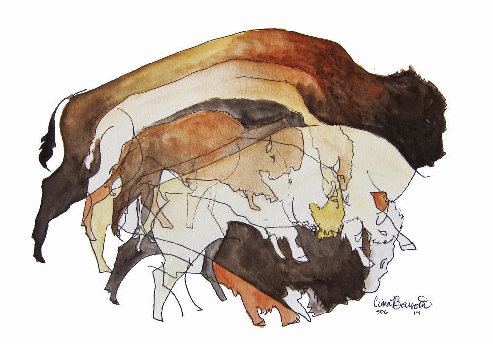 Six Bison