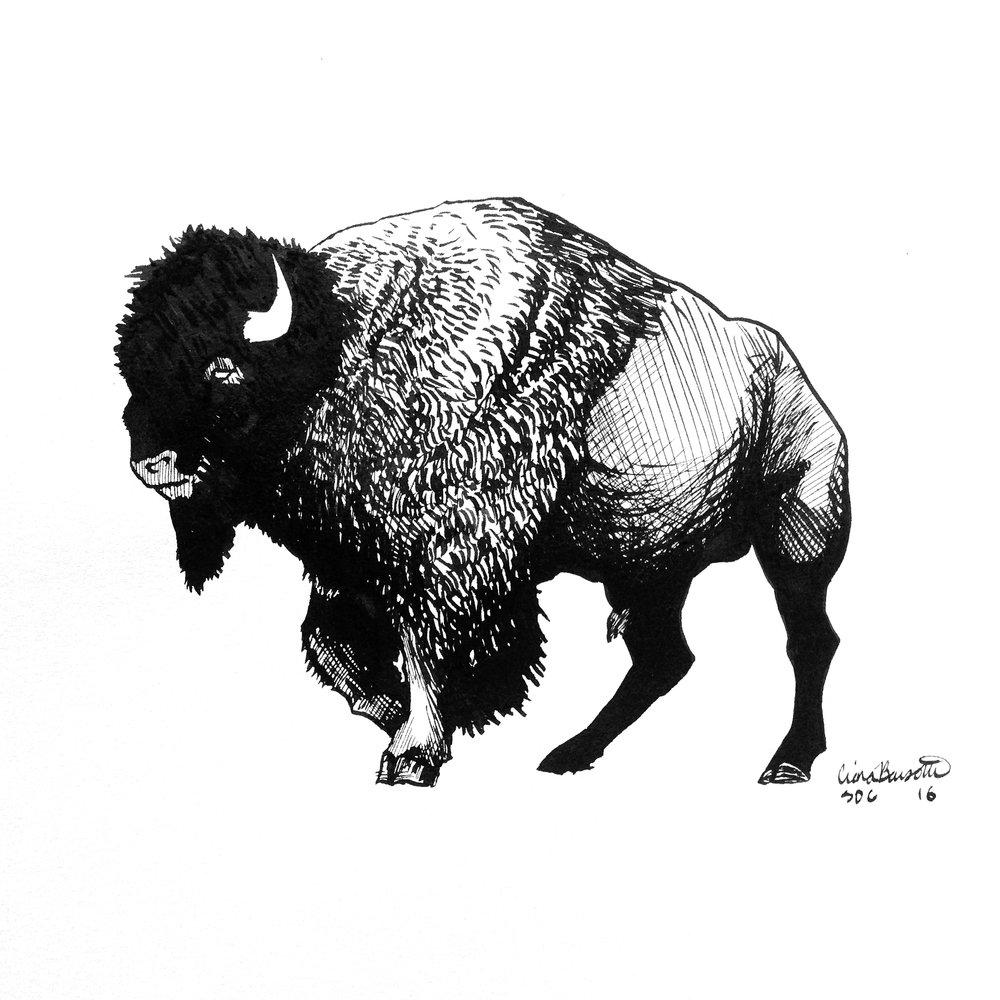 Buffalo Ink
