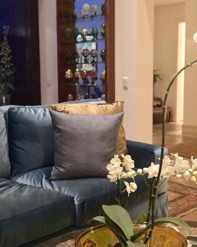 Veludo, dourado, textura? Temos! E adoramos! 💙✨ . . #pocketdecor #pocket_decor #projetopocketdecor #veludo #azul #dourado #texturas #over #sofa #livingroom #saladeestar #velvet #blue #gold #decor #decoracao #homedecor #homedesign #instadecor #instadesign #designdeinteriores