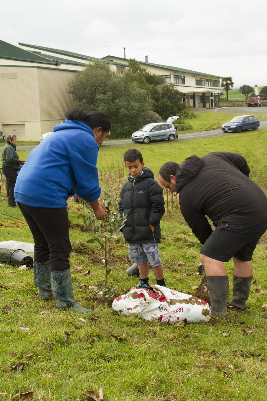 orchard planting-143.jpg