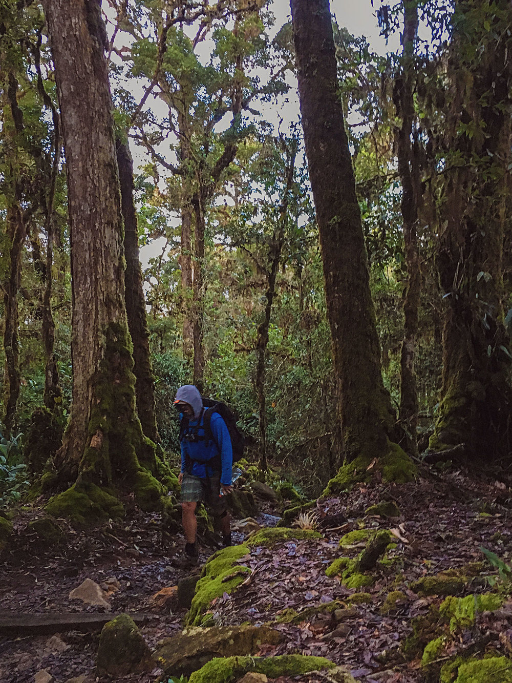 cerro-chiripo-costa-rica-wander-south-8.jpg