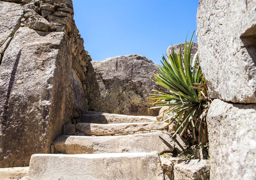Machu-Picchu-Peru-wander-south-citadel-stairs.jpg