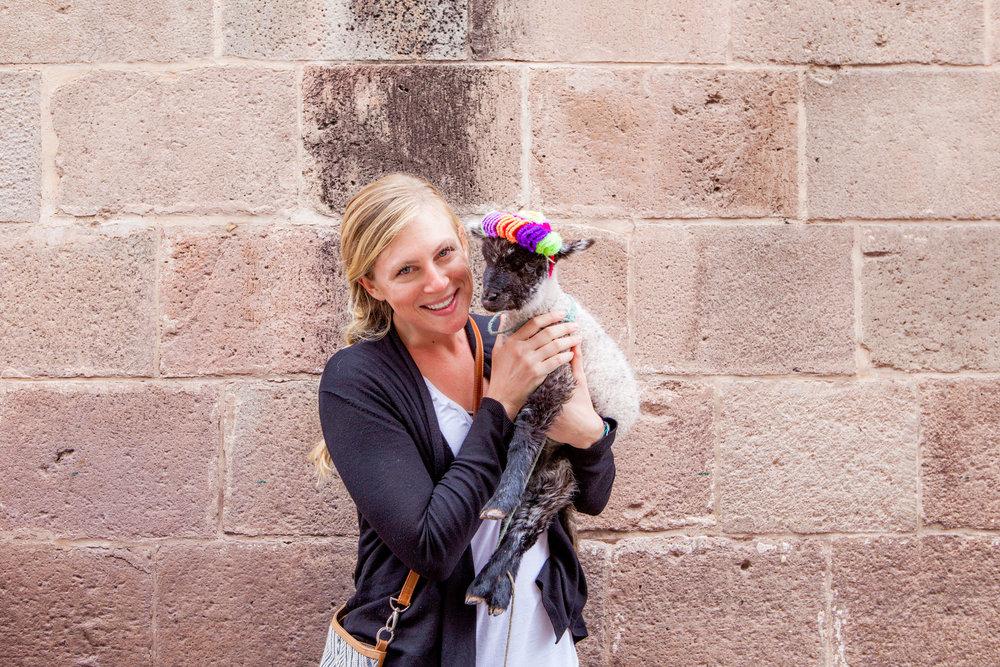 Cusco-Peru-wander-south-meg+lamb+sheep.jpg