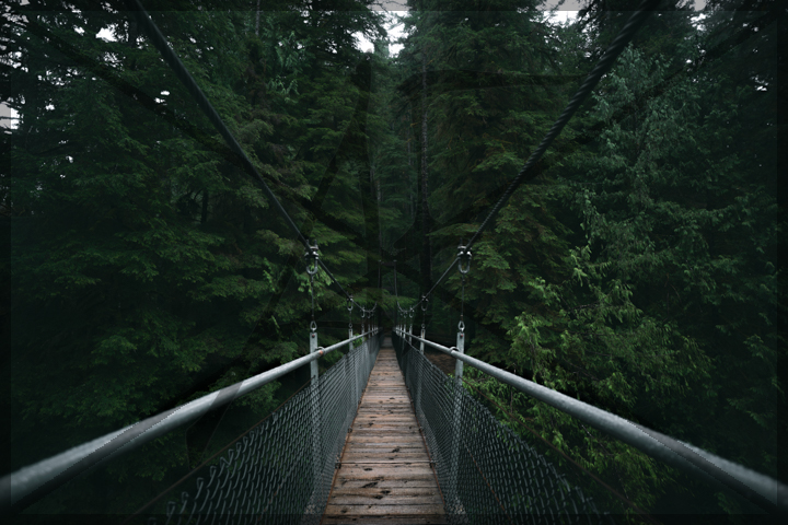 Trail bridge - January 2018: Tillamook State Forest, OR