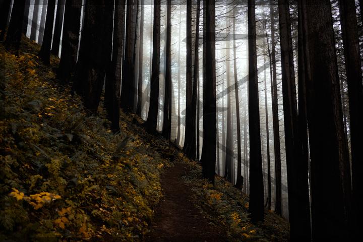 Devil's rest - November 2018: Multnomah Falls, OR