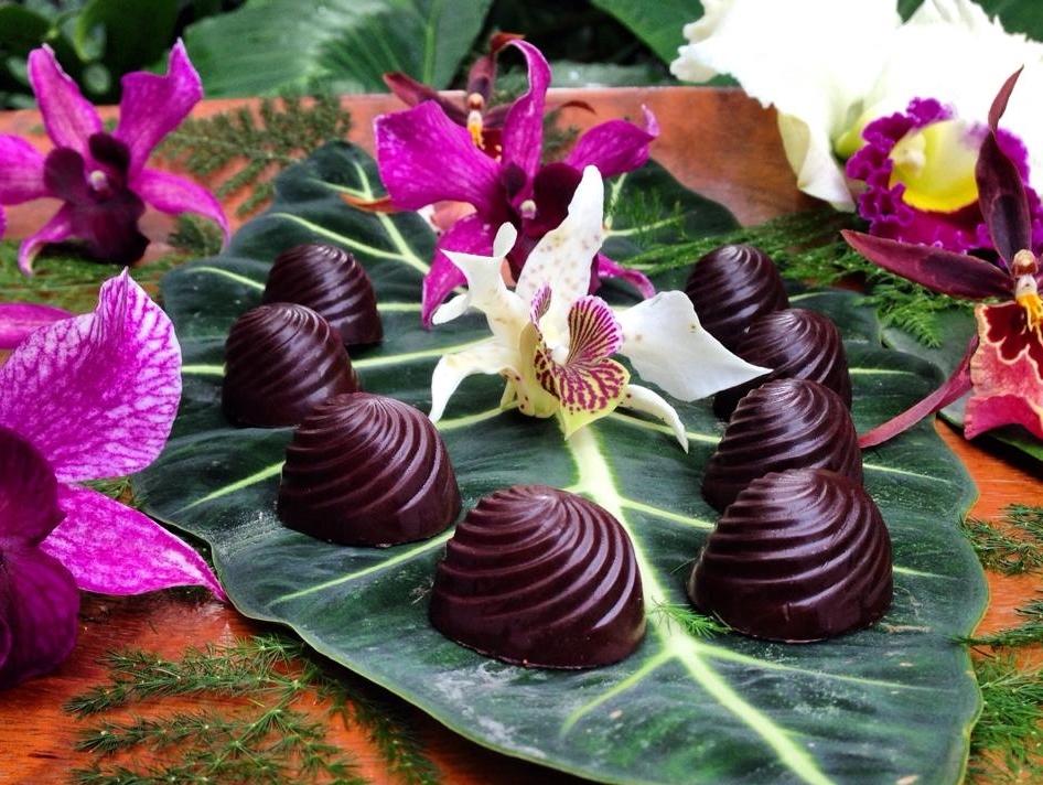 Hazel kiss Kauai.jpg
