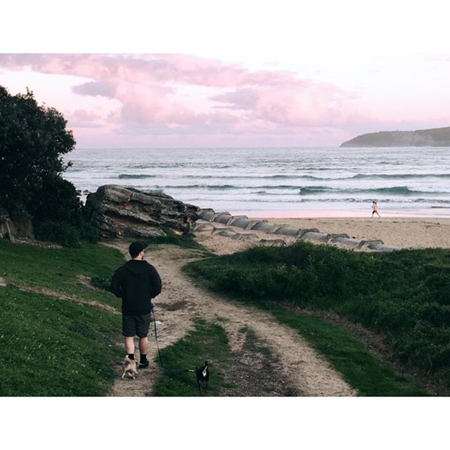 T h e s e  3 👨🏽🐶🐶 And this place. Magic. #thisshellife #sunset #freshwater #northernbeaches #sydney #winter #ocean #sea #beach #nature