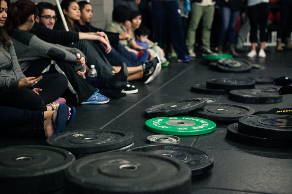 Weightlifting plates.jpg