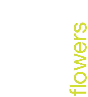 In Water Flowers | Wedding, event and corporate florist London