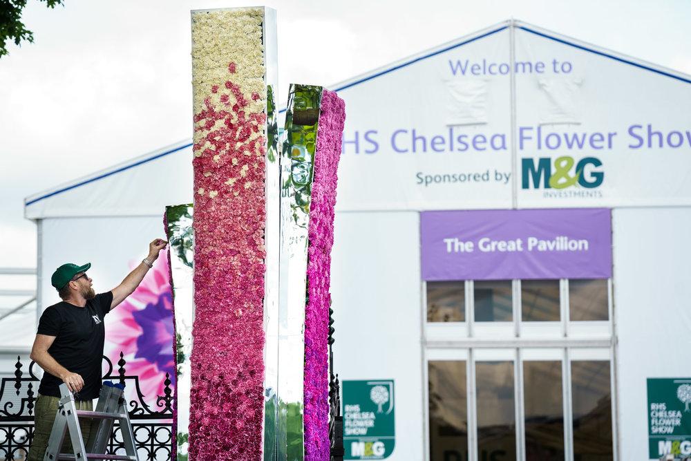 RHS Chelsea Flower Show installation