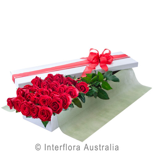 Interflora2.jpg