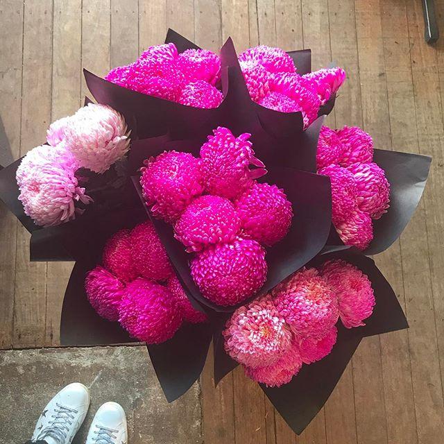 OPEN ALL WEEKEND SAT & SUN TILL 2pm  #flowersinbloom #mothersday #attadaleflorist #fremantleflorist #applecrossflorist #perthflowers