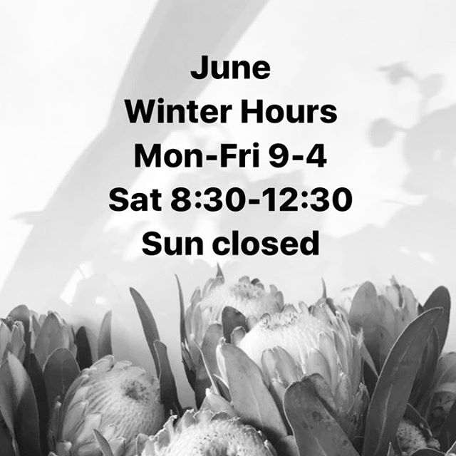 Changing up the opening hours for the month of June!  #perthflowers #attadaleflorist #applecrossflorist #fremantleflorist #flowersinbloom #perthflorist #florals #open #indoorplants