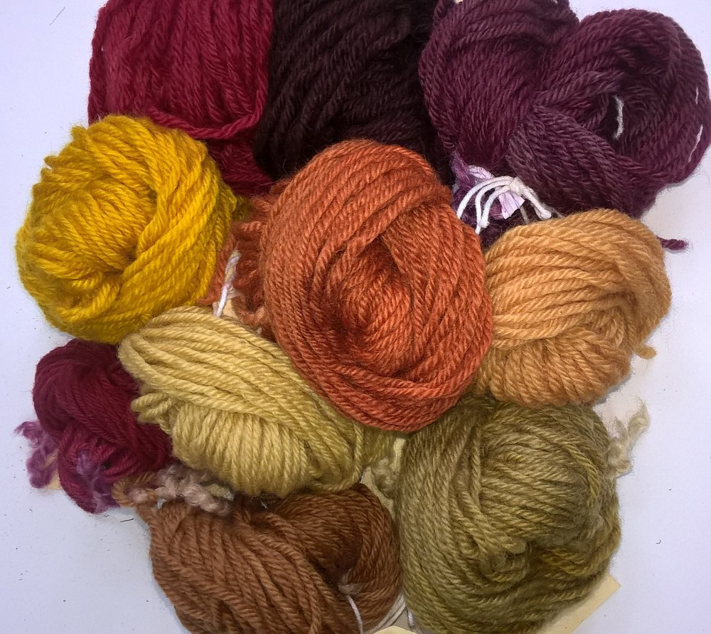 Natural dyes produced at workshop on 15th September