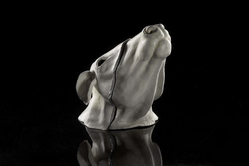 White Cow Head by Natalie Ryan