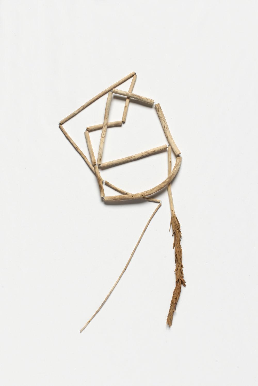 Cara Johnson,  creek , 2016. crack willow, iron, paper. Image Jeremy Dillon