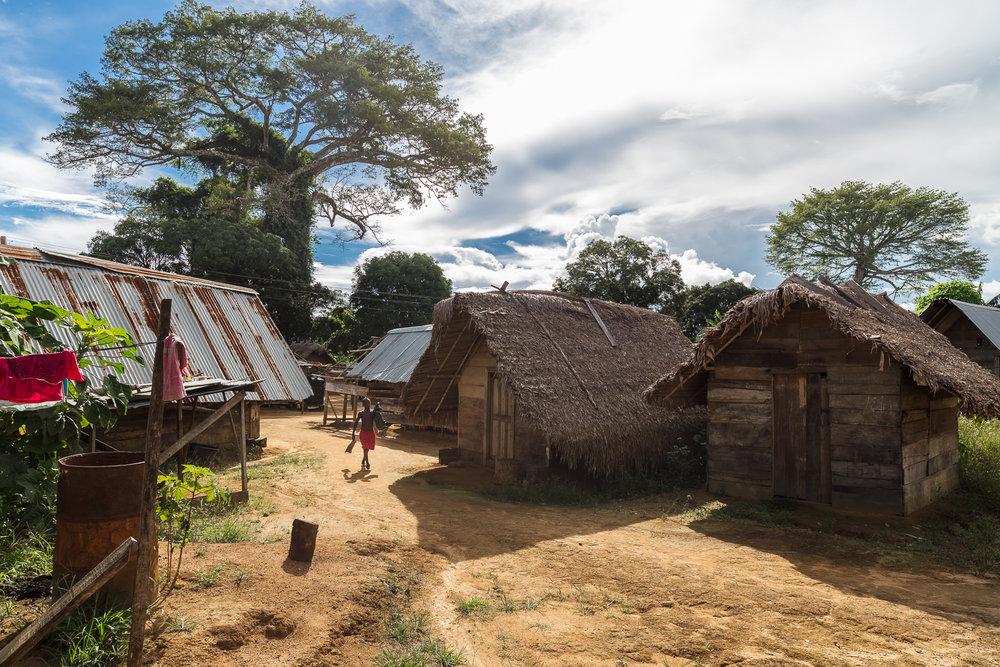 Suriname-10.jpg