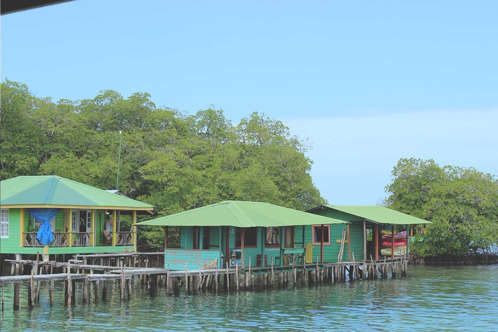 Bocas 17.jpg