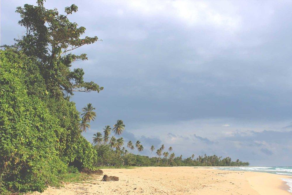 Bocas 27.jpg