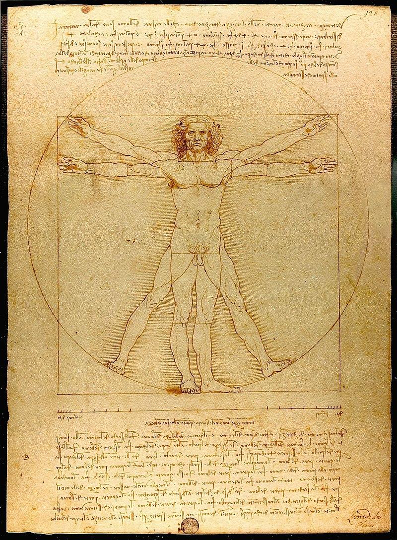 #05. Leonardo da Vinci (1452–1519).  Vitruvian Man  circa 1492. Medium drawing pen, ink and wash on paper. Collection Gallerie dell'Accademia.    CA by-SA 3.0