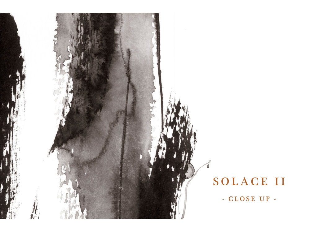 Dana Trijbetz, Sydney-based Artist - Abstract Collection 2018 - Ink Painting - 'Solace II' Series Website Close Up.jpg