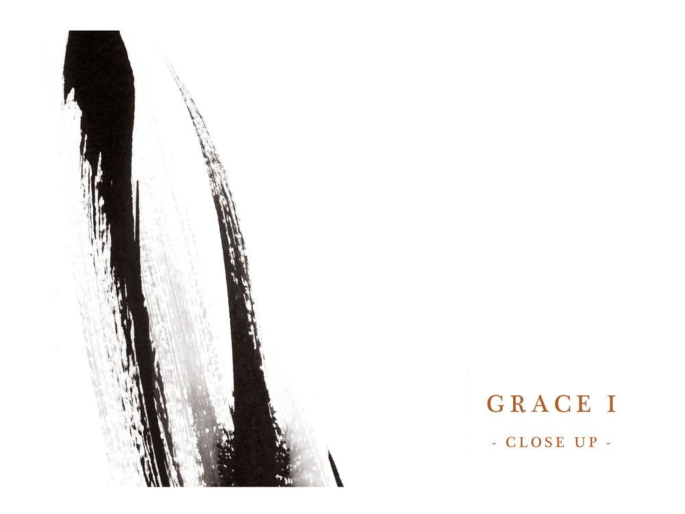 Dana Trijbetz, Sydney-based Artist - Abstract Collection 2018 - Ink Painting - 'Grace I' Website Close Up.jpg