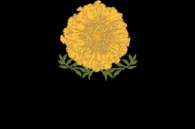 MARIGOLD_FlowerCo(web).png
