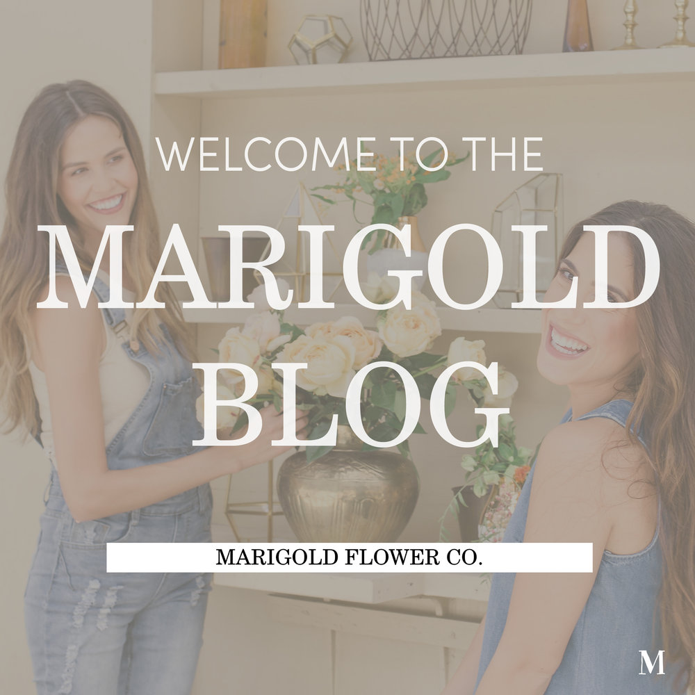 Welcome to The Marigold Blog_Cover.jpg