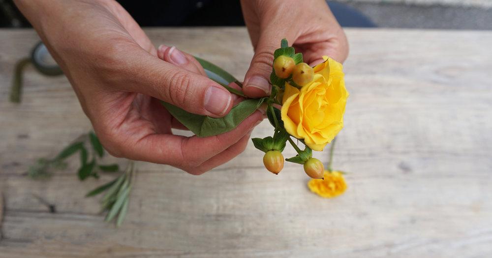 rosehypericum.jpg