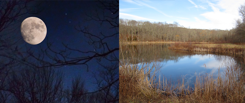 photos: full moon B. Fellman, Fusina pond S. Simm